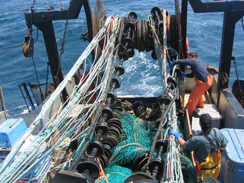 "Fishermen switch nets to use the haddock rope trawl, or eliminator trawl, during testing on the F/V Iron Horse.: NOAA's Fisheries Service has approved the use of new trawl gear that is expected to reduce the catch of nontarget fish species in the Northeastern groundfish fishery by more than 50 percent. The use of the ""haddock rope trawl,"" commonly known as the eliminator trawl by the Northeast commercial groundfish fishing industry, should help conserve and restore depleted groundfish resources, such as cod and flounders, while allowing vessels to target haddock and other healthier stocks that live in the same area.  Groundfish species often live together near the sea bottom, and are caught by trawl gear. However, some stocks are overfished. Most are under rebuilding plans, but some fishing is allowed on all of them. The haddock rope trawl was developed by the University of Rhode Island Sea Grant College Program in conjunction with commercial fishermen, in a project funded by the NOAA's Fisheries Service Northeast Cooperative Research Partners Program. The project was intended to develop a gear that would capture fish from stocks that are not overfished, while avoiding or releasing others. Photograph courtesy of NOAA by Laura Skrobe, University of Rhode Island, Rhode Island Sea Grant. Text from NOAA."